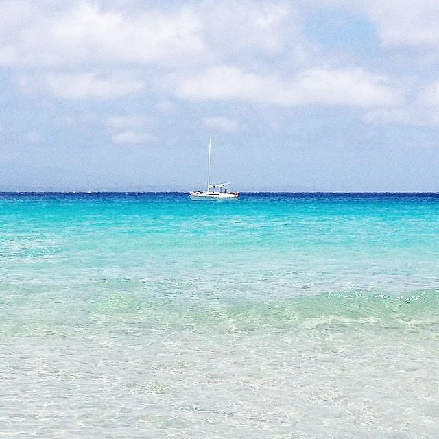 Voglio riempirmi gli occhi di blu...  #summer #sardegna #sea