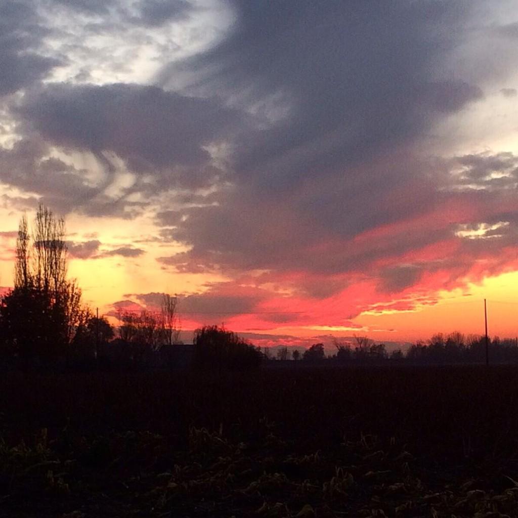 Unreal sunsets  #picoftheday #photooftheday #lifestyle #sunset #sky #skyline #igers #igersbologna #igersmodena #igersitaly #igersemiliaromagna