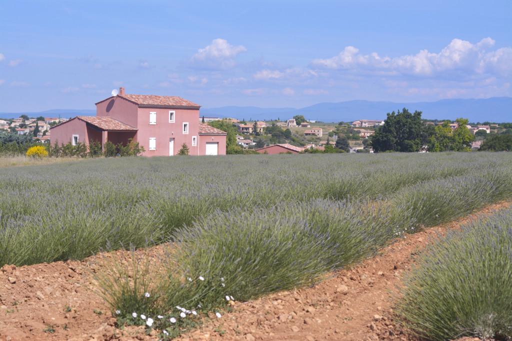 provenza9