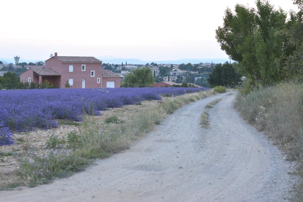 provenza4