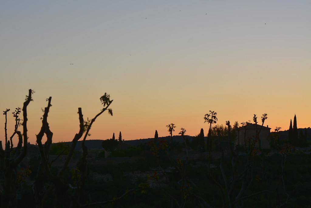 chateauneuf-tramonto