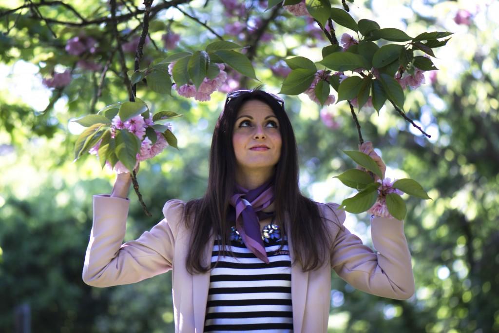 albero rosa3